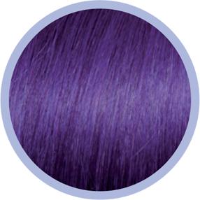 euro socap 63-violet