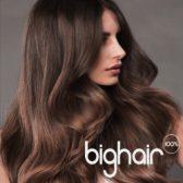 bighair model 1