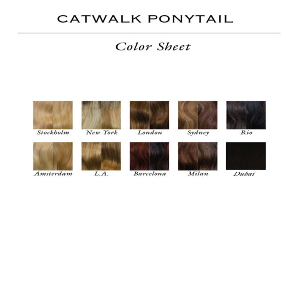 r Ponytail Straight color sheet