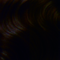 balmain hairxpression 2-4